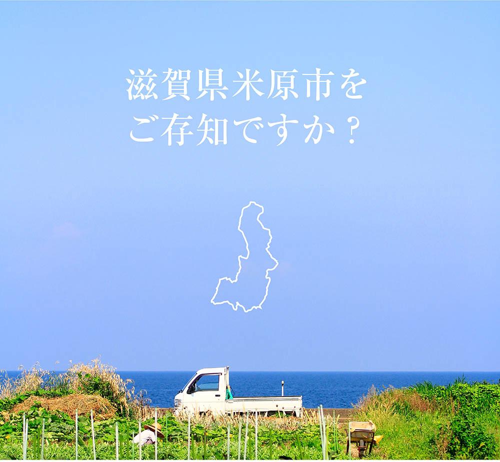 滋賀県について